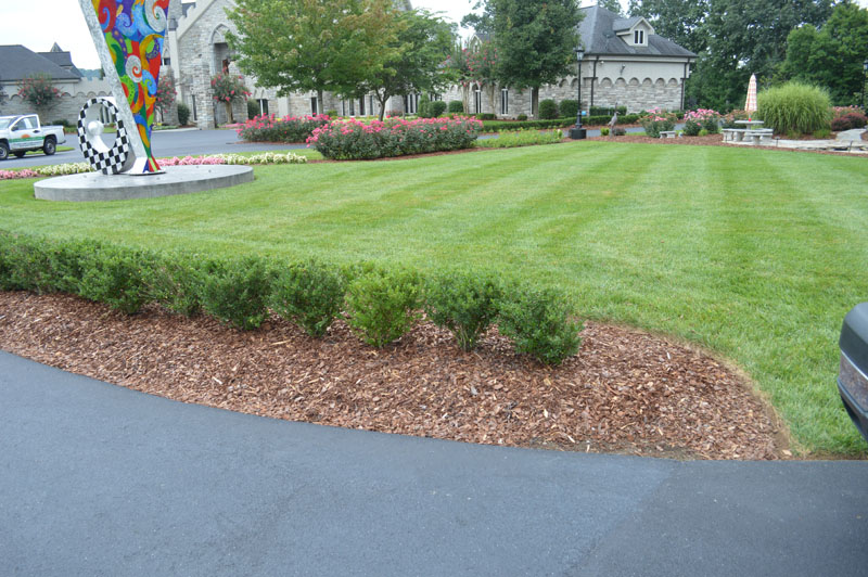Manicured Lawn With Landscaped Driveway
