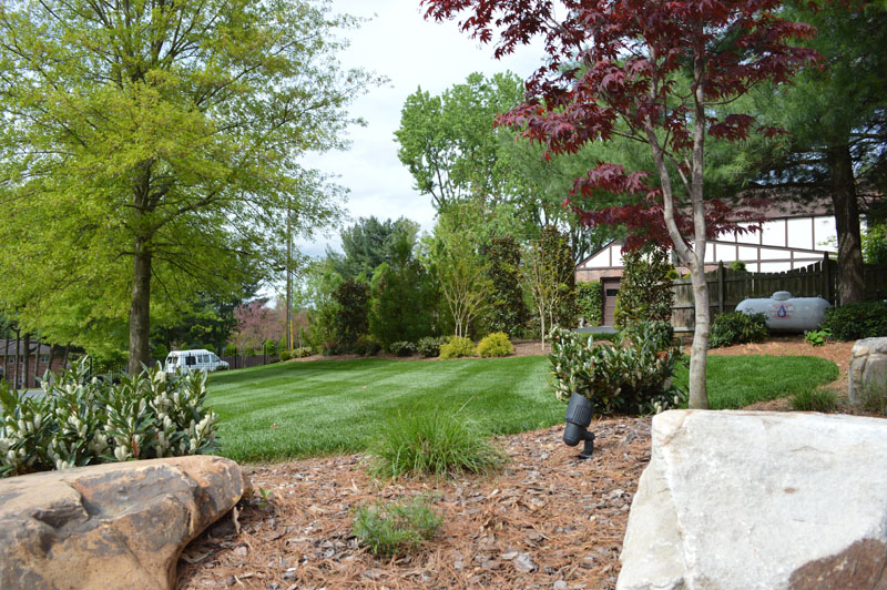 Landscaped Area and Manicured Lawn