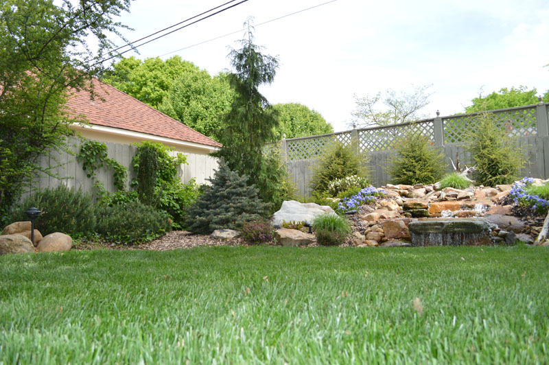 Freshly Cut Lawn with Landscaped Waterfall Area