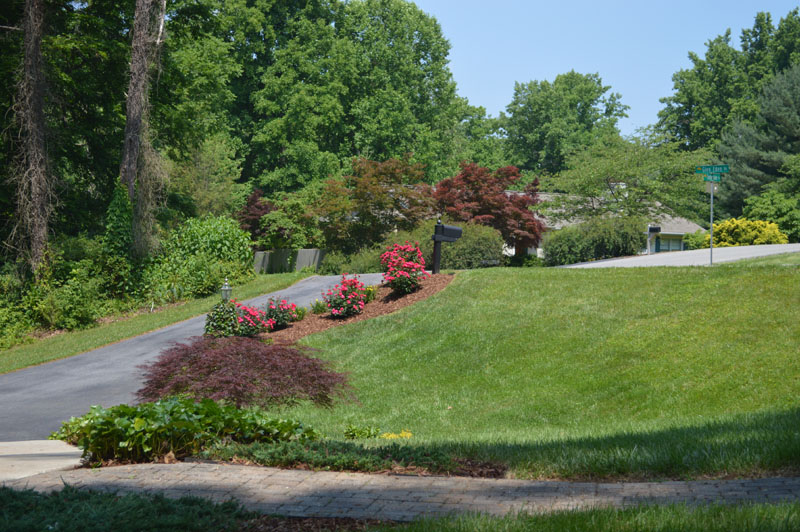 Landscaped Driveway Area