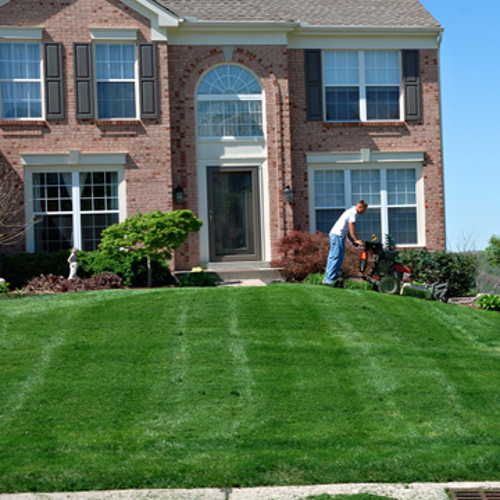 Mowing the lawn do it yourself or hire a service for Professional garden maintenance